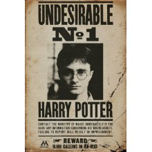 Plakát HARRY POTTER - UNDERSIRABLE