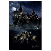 Plakát 52 Harry Potter - Lodě
