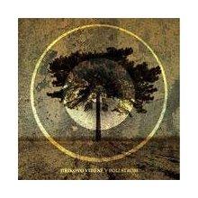 V poli strom