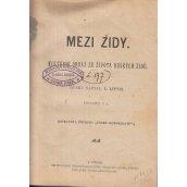 Mezi židy : kultur. obr. ze živ. ruských židů